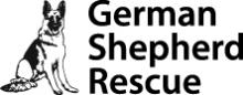 GSR logo ADI