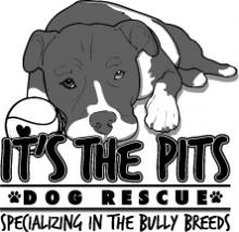 ITs The Pits Logo ADI