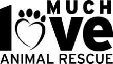 MuchLove logo big ADI