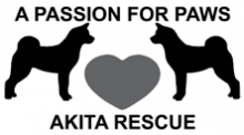 Passion AkitaRescue 222temp