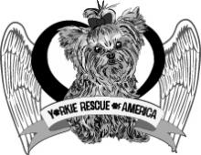 Yorkie Rescue of America Client LOGO
