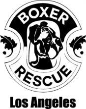 boxer rescue ADI 222W