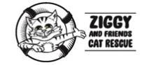 ziggy logo art 222Wtemp
